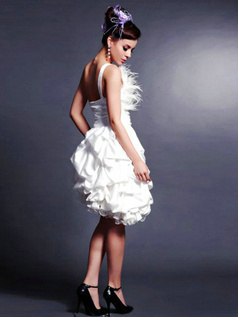 Lovely Princess Organza Asymmetrical Train Feathers Graduation/Prom Dresses