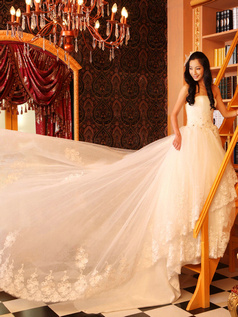 Ball Gown Tube Top Chapel Train Lace Wedding Dresses