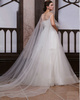 Beautiful Princess Tulle Bateau Watteau Train Wedding Dresses