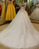 Ball Gown V-neck Court Train Tulle Crystal Jewelry Sleeves Beading Wedding Dresses