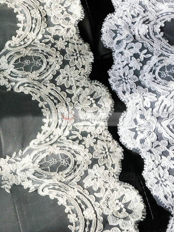 Single Layer Tulle Cathedral Length Three-dimensional Lace Applique Edge Wedding Veil